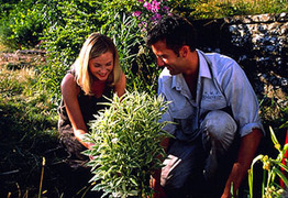 Greenfingers_70412_1_2